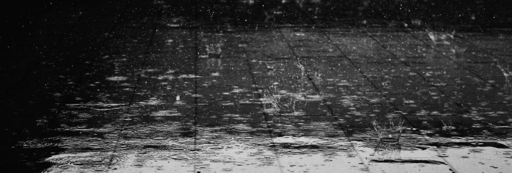 image - rain-floor-water-wet-69927